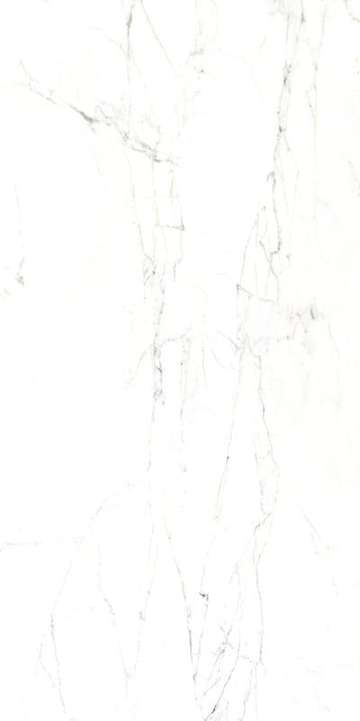 CARRARA-2-60X120